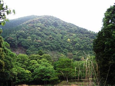 Ayanomori03
