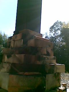 20100101039