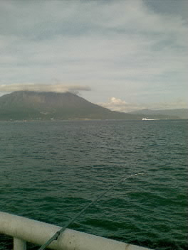 鹿児島、パンダ、サカナ
